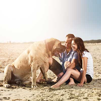 young-couple-beach-dog